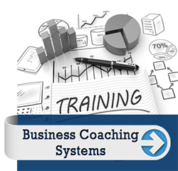 business coaching systems
